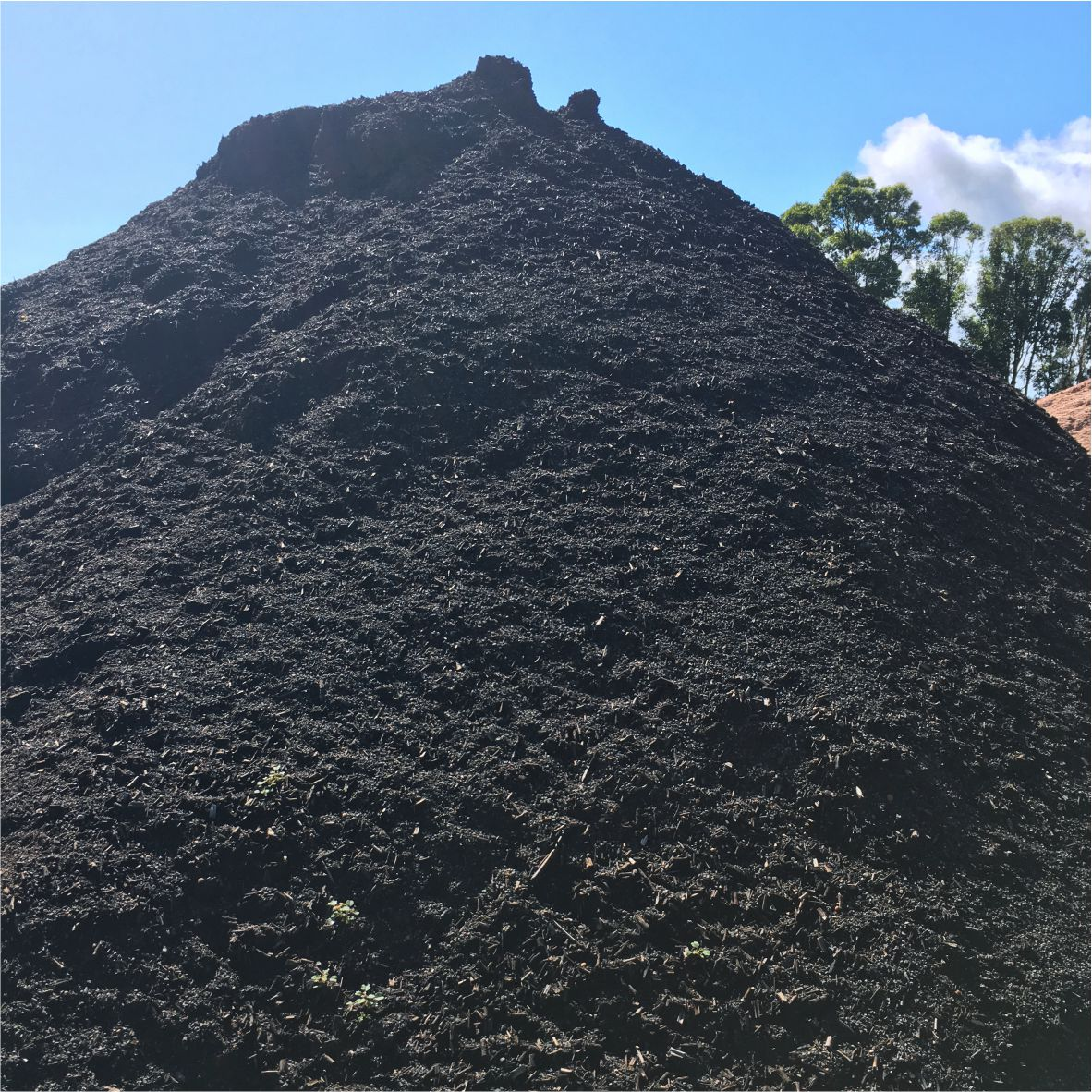 garden soil our special garden soil made here in swan bay is a mix of soil manure composted tea tree and secret herbs u0026 spices